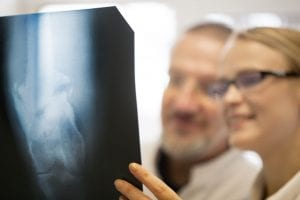Doctors making a diagnosis using x-ray images