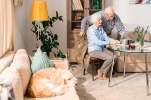 Happy Elderly Couple at Home