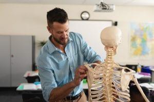 Male teacher fixing skeleton model in classroom of elementary school