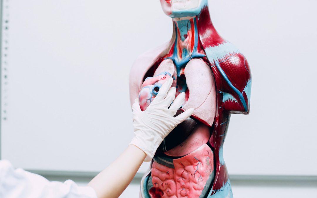 7 Tips for Preventing Heart Failure